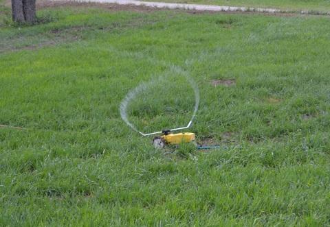 Growin Green Grass (5)1.jpg