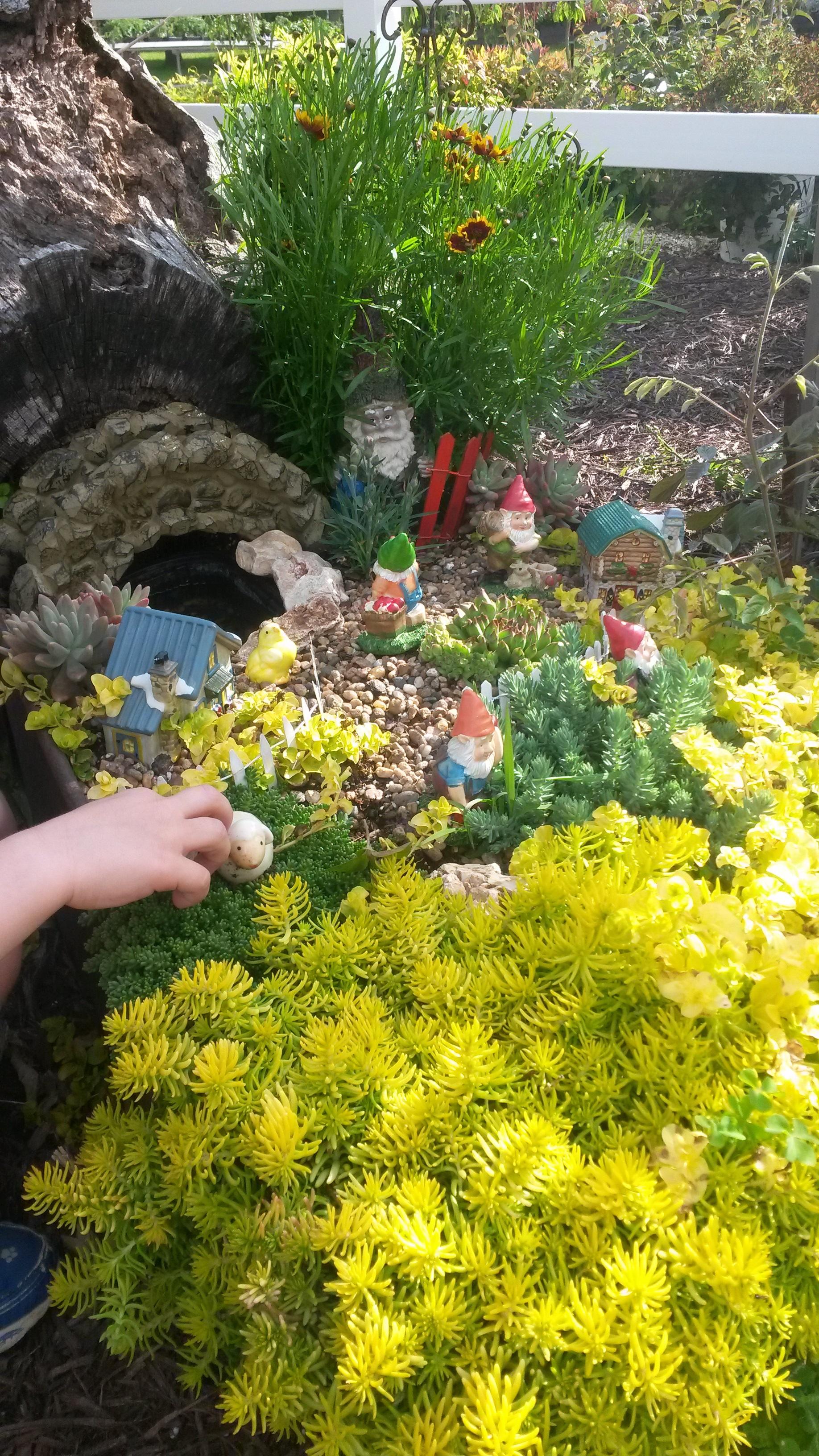 Fairie Gardens.jpg