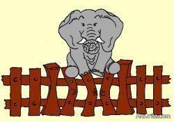 elephant-on-a-fence