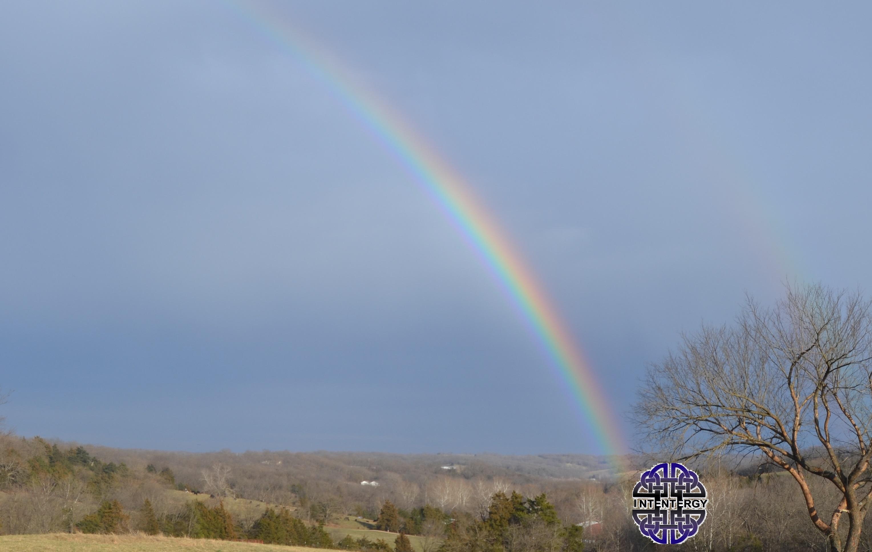 Follow the rainbow.jpg