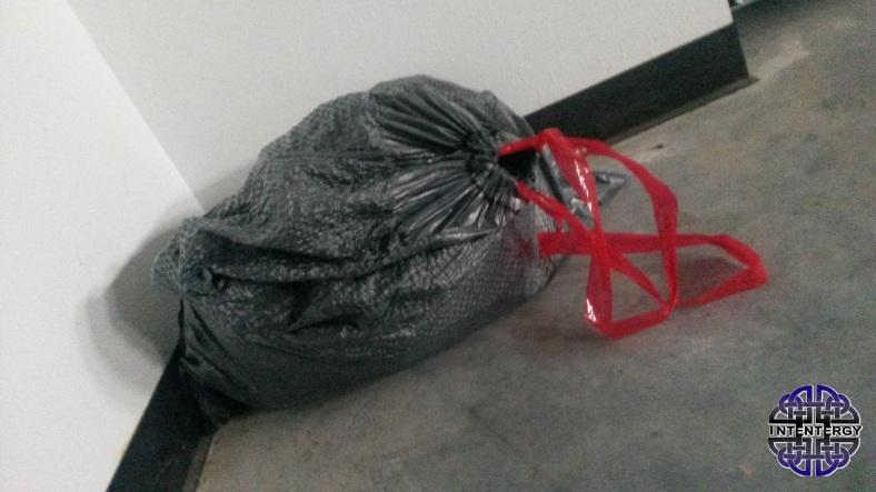 Just One Trash Bag