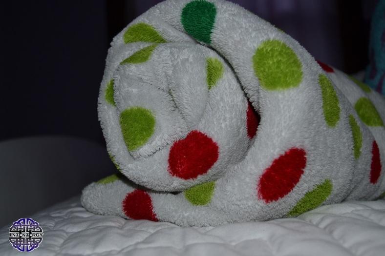 Stolen blanket 1