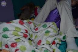Stolen blanket 21