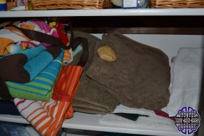 Biscuit in the Bathtowels (2)
