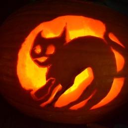 Pumpkin Guts 10 (1)