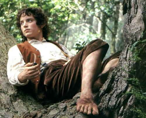 At Least You Don T Have Hobbit Feet And Ears Wise Words Wednesday Intentergy